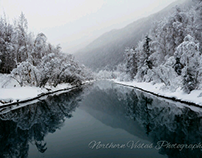 alaska nature scenes