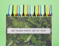 Mini Libro Experimental / Mini Experimental Book