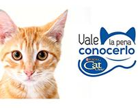 """Campaña Cat Chow """"Vale la pena conocerlo"""""""
