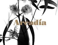 Arcadia – Property Development Brochure