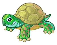 Tough Baby Turtle or Tortoise Cartoon