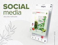 Social Media - Aloe Vera | 2020