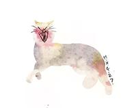 everyday cats7