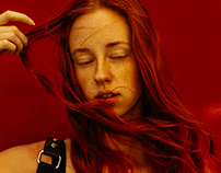 Italian Redhead