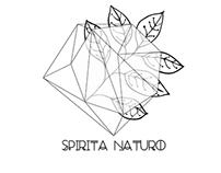 Spirita Naturo