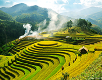 Sapa terraced field - beautiful places in the world