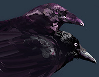 Huginn and Muninn