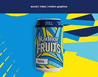 Radnor Water Social Campaign