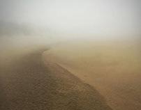 voile de brume dévoile l'esquisse