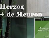 Herzog + de Meuron Presentation
