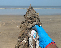 Plastic Waste Removal from Mumbai's Beaches -Ongoing