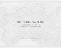 Phenomenology of Rice