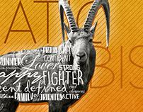 WWF - Wildlife of Pakistan | Design & Art Direction