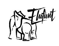 Elufunt Word Mark and Icon Design