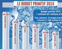 Le budget primitif 2015
