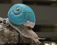 Kintsugi Snail