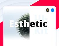 Esthetic UI Kit [PSD & Sketch]