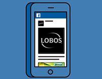 Post RRSS Sal Lobos Cl - Pe y Biosal