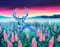 Deer in lavender garden 02