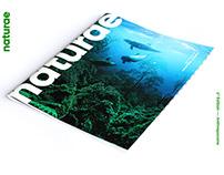 e-zine — print to web