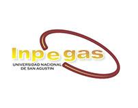 inpegas (instituto de petróleo, energía y gas)