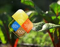 Edyn Digital Garden System