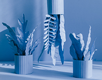 Monochrome Paper Plants
