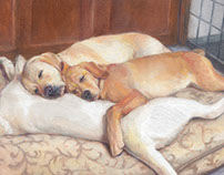 Pet Artwork, 2014 to present