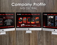 Flash Company Profile