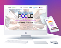 Web Design - FOCLE