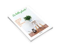Projet startup : la belle plante
