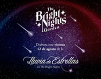 The Bright Nights