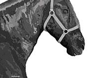 Ilustración en photoshop, Tyrion caballo frisón