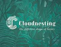 Cloudnesting Logo and Concept