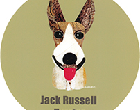 030 | Jack Russell Terrier (Prick ears)