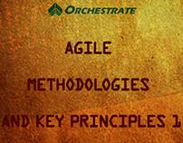 Agile Methodologies and Key Principles Series I
