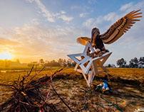 Pelican Star Nest - Engulf 2016