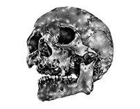 "Skull, Ink on paper, 3 x 3"", 2016"