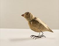 Ptaszynka