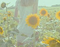 Rondo of the Sunflower