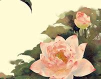 Lotus荷花练习(Jan,2019)