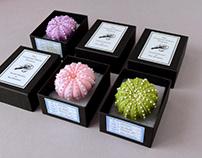 Felt & Bead Sea Urchin Brooches