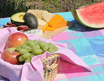 Edita Kaye Picnics in May