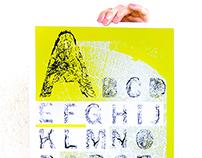 BFA Thesis - Senior Graphic Design Project