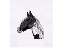 LIFELIKE PORTRAIT OF A HORSE EMBROIDERY DESIGN