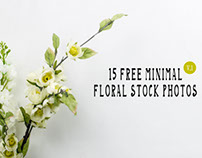 15 Free Minimal Floral Stock Photos – Vol.1