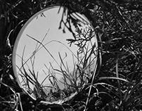 Mirror Landscape Series