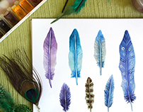 Watercolor feathers in different designs