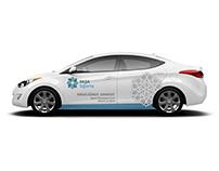 Pasha Insurance - Breanding Car