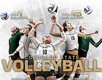 2014 Colorado State Volleyball Award Winners